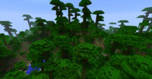 jungle dans minecraft