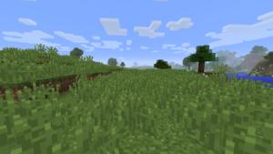 plaines dans minecraft