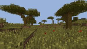savane dans minecraft