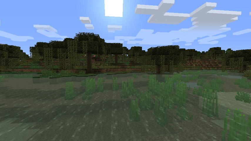 marais dans minecraft